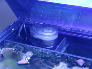 BioCube skimmer functioning