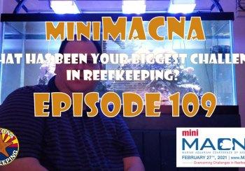 Episode 109 - miniMACNA - What has been your biggest challenge in reefkeeping?
