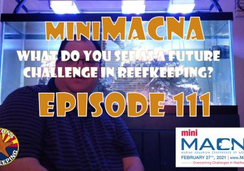 Episode 111 - miniMACNA - What do you see as a future challenge in reefkeeping?