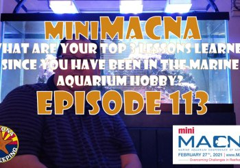 Episode 113 - miniMACNA - What are your top 3 lessons learned in reefkeeping?