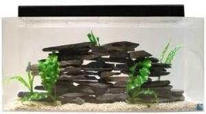 Fish Tank Size