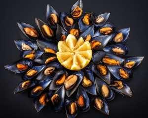 Peste si fructe de mare