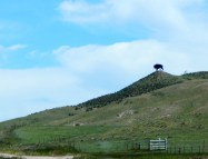 The Colorado bison still stood guard near the state line.