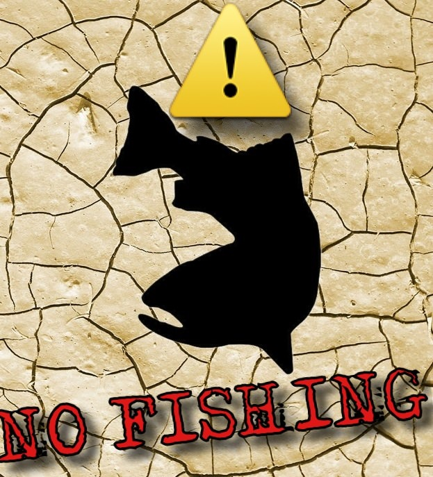 Emergency fishing closures now in effect on american for California fish and game regulations