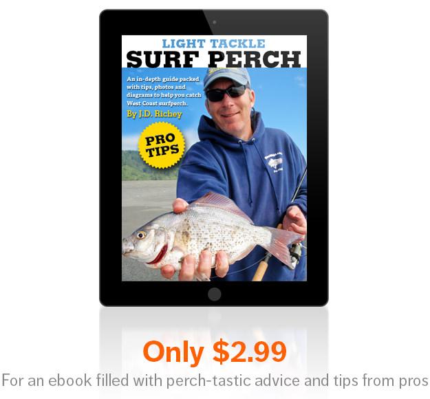 Surf Perch ebook cover