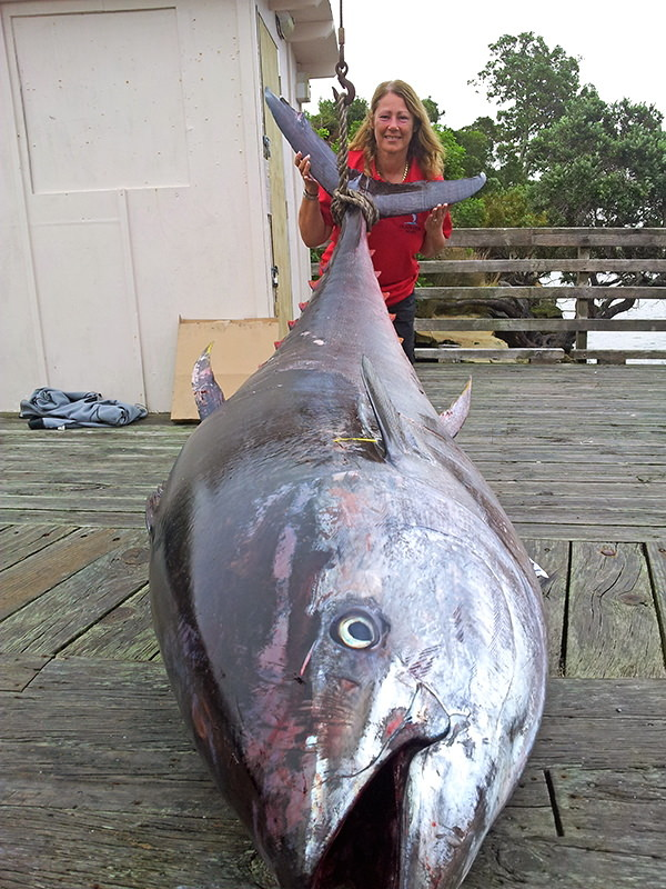 World record pacific bluefin tuna