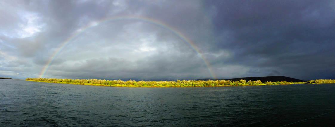 Togiak rainbow
