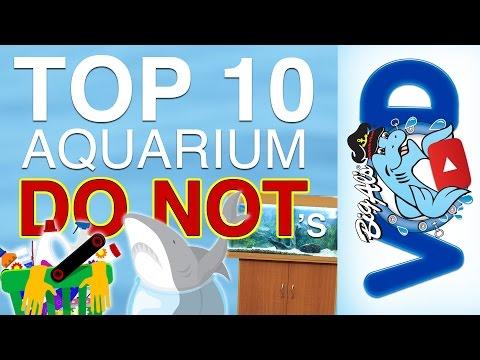 Aquarium do nots