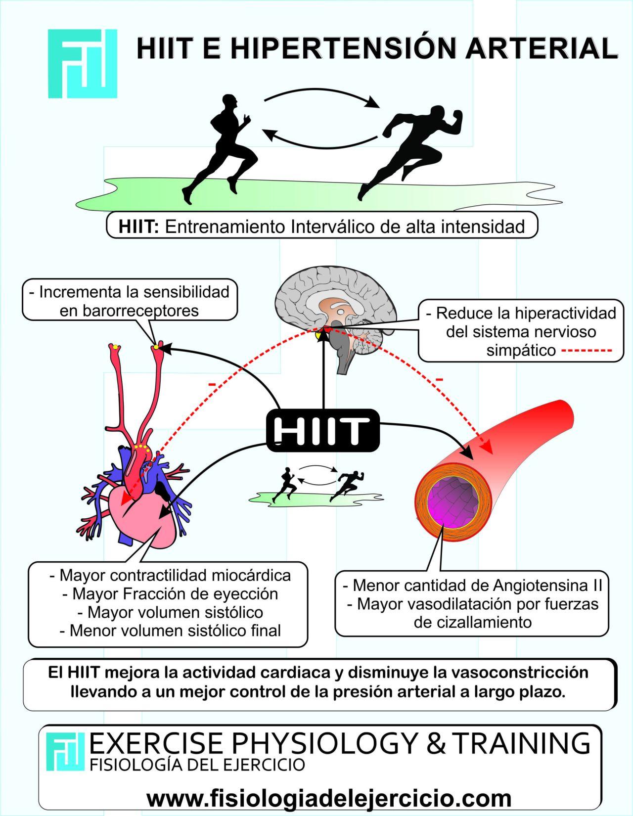 HiiT e Hipertensión Arterial