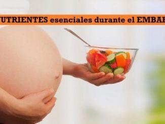 NUTRIENTES esenciales durante el EMBARAZO