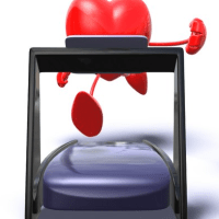 Fases de um Programa de Reabilitação Cardiovascular