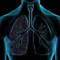 Por que não precisamos pensar para respirar?