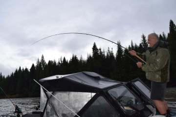 Fiskerejser og fiskeeventyr i Kitimat Steelheads på i Kalum i silende regn