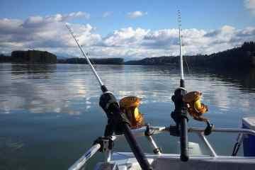 Fiskeeventyr klar til stør