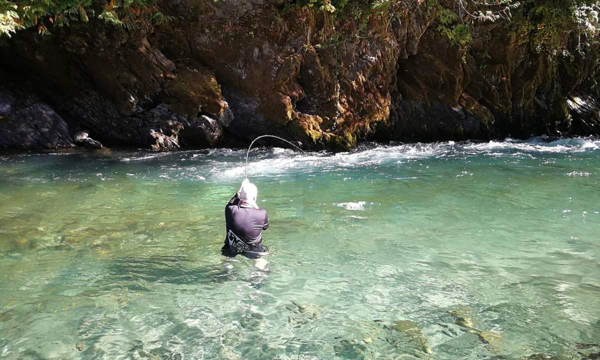 Fiskerejse til Chilliwack - jesper står i vandet med kongelaks på