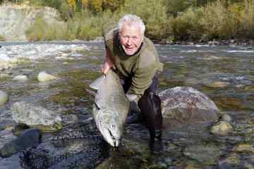 Fiskerejse til Chilliwack - 15 kilo kongelaks