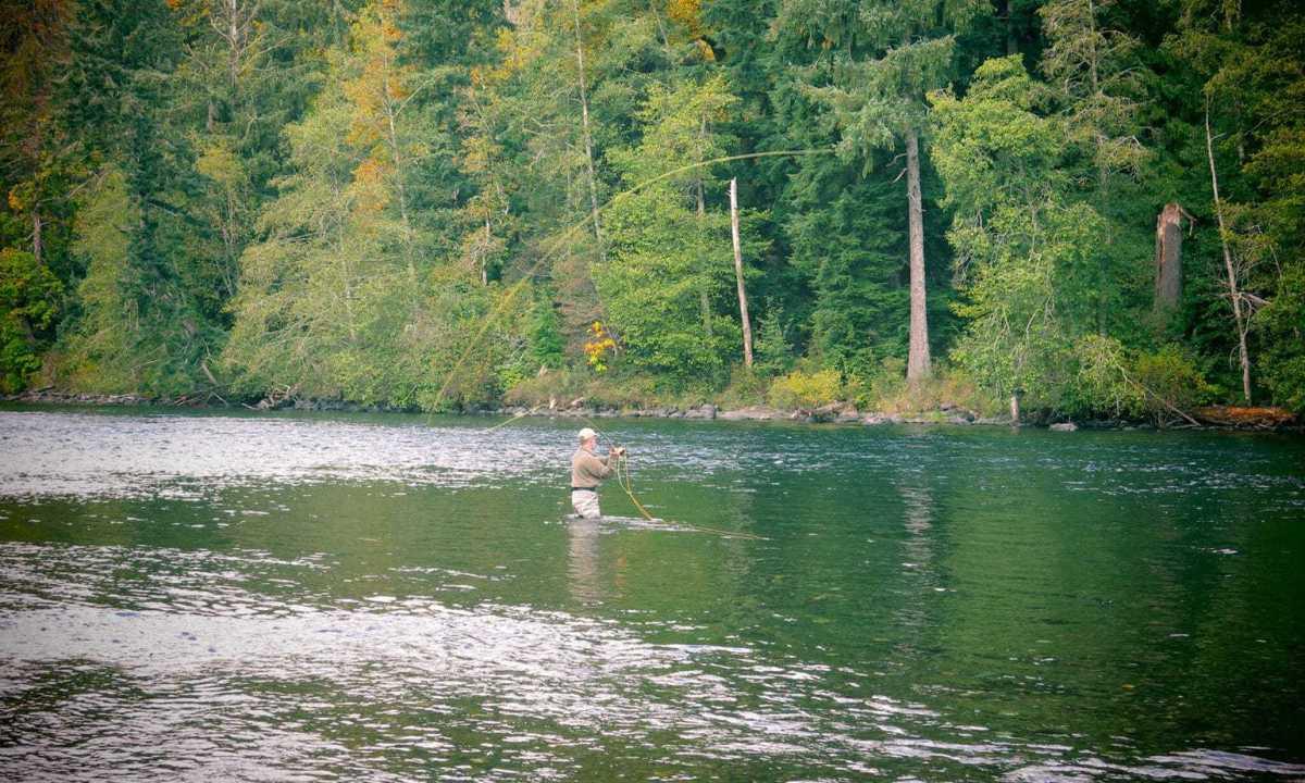 Fiskerejse-til-Vancouver-Island-efter-sølvlaks---flue-i-cambell