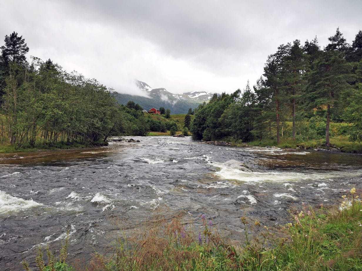 Todalselven i Norge med fiske-eventyr (7)