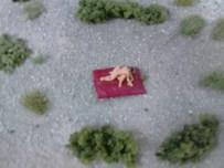 Und ich dachte, es wäre eine harmlose Miniaturlandschaft, die man da auf der LaGa sehen konnte D: