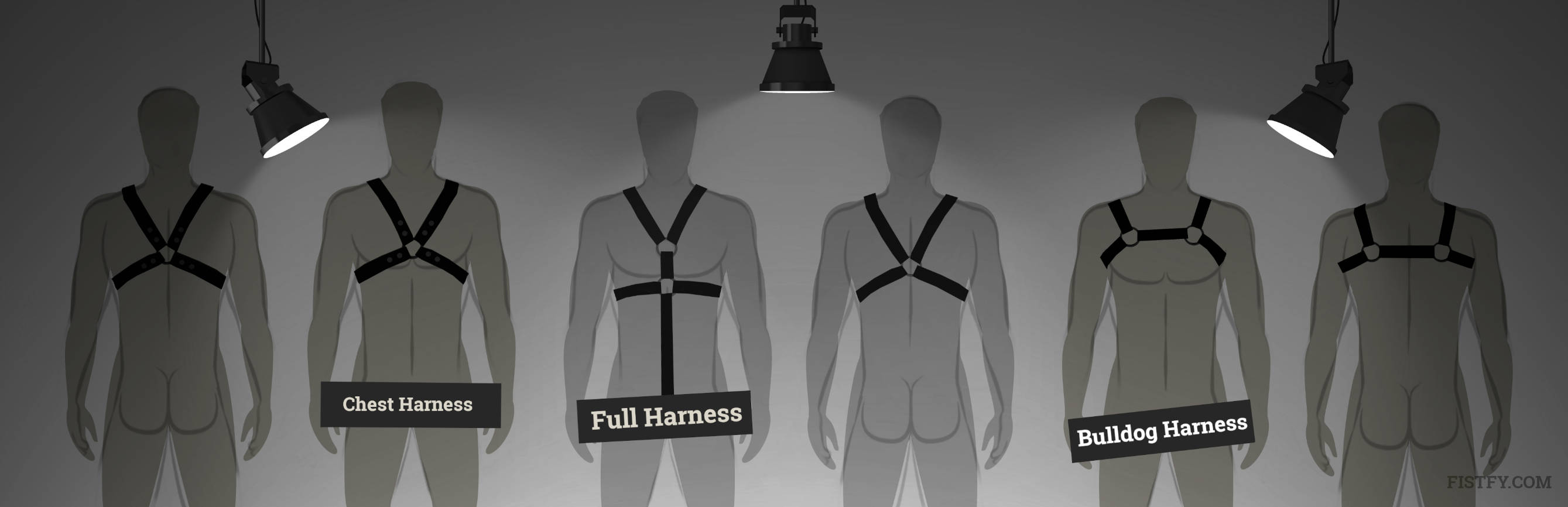 The most common styles of harnesses is The Bulldog, an H-Shape Harness, the classic Chest Harness.