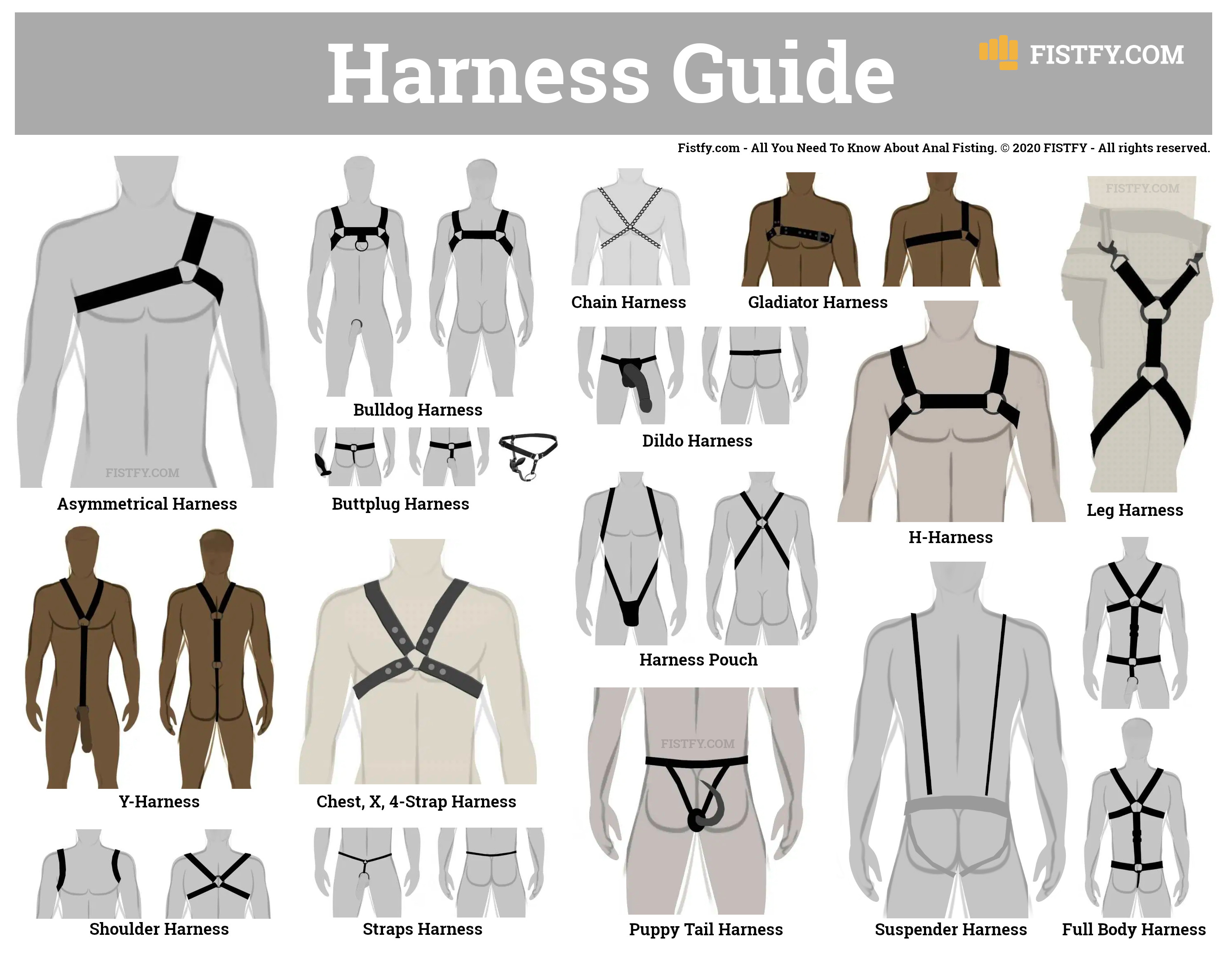 Gay Harness guide