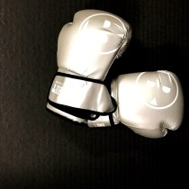 Big Hit gloves
