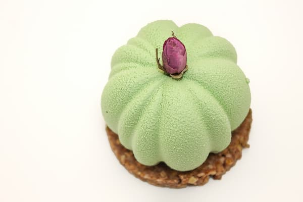 cheesecake matcha framboise vegan et sans gluten