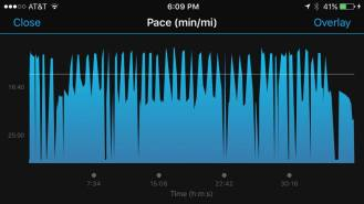 Pace for what garmin captured