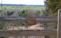 The Sweetwater Overlook is a great stop on the trail. The single bench overlooks a large expanse of the Paynes Prairie Preserve.