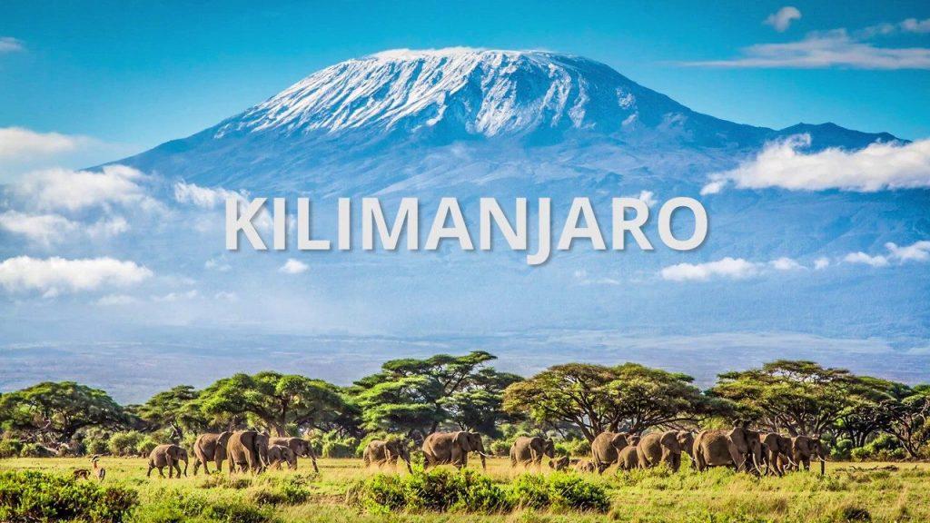 cropped-Seattle-Scientist-Summits-Mt.-Kilimanjaro-to-Fight-Cancer-Raise-Money.jpg