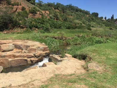 Sunday Hike and Lunch – 7 Feb 2016-Klippies 7