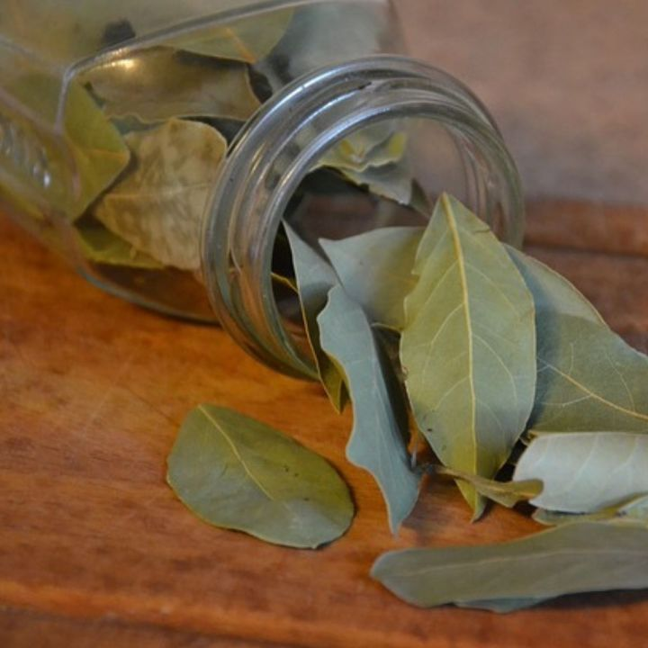 jar of bay leaves tipped over