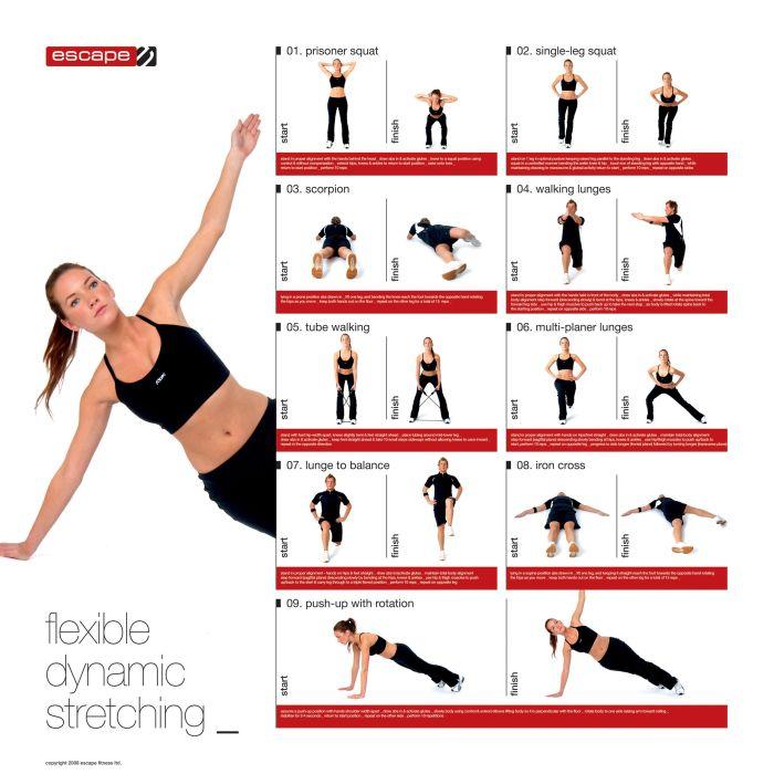 Shoulder Range Motion Stretches