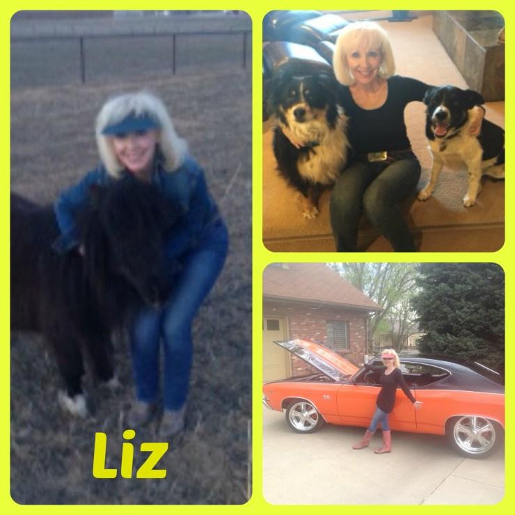 LizCollage