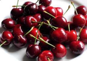 Poisonous fruits