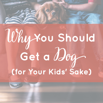 Why You Should Get a Dog (for Your Kids' Sake)