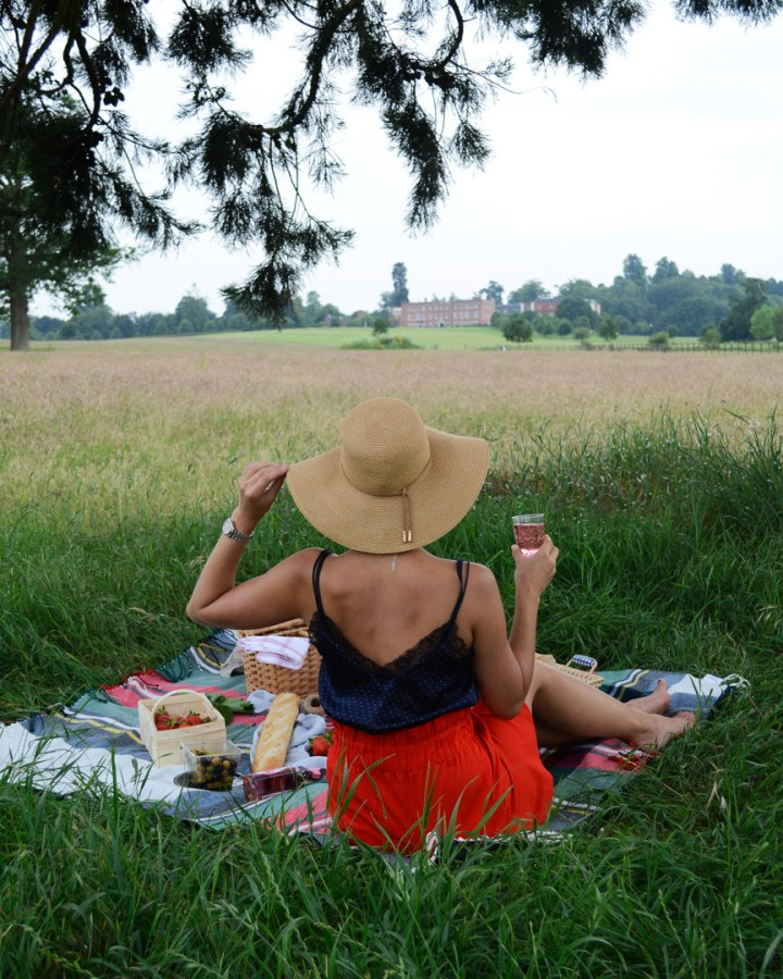 Picnic in the field with a lady in a hat holding a glass in the hand