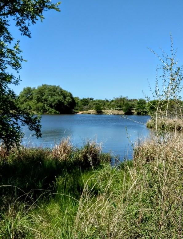 Moss Lake at Enchanted Rock