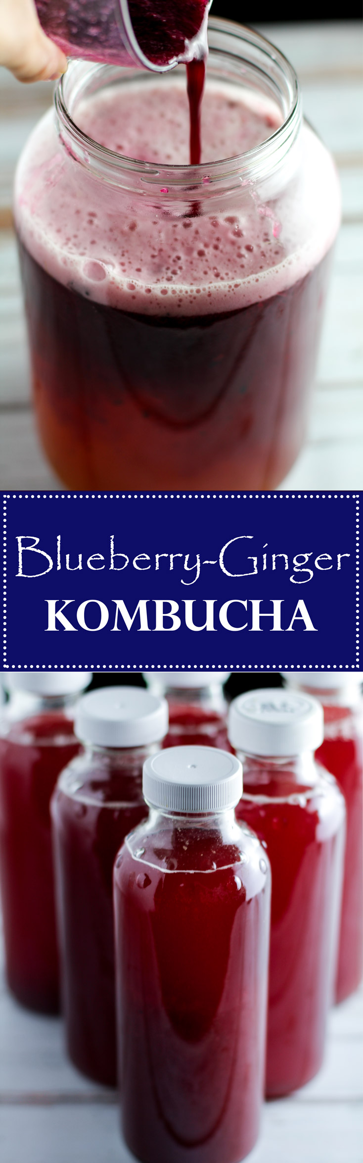 This flavored Blueberry Ginger Kombucha recipe is a tasty way to flavor your own homemade kombucha, a health drink full of nutrients and probiotics!