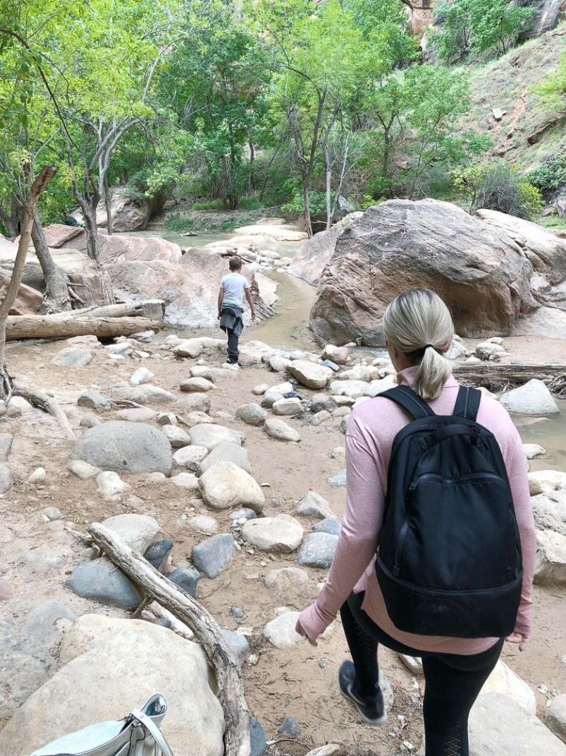 hiking zion with kids