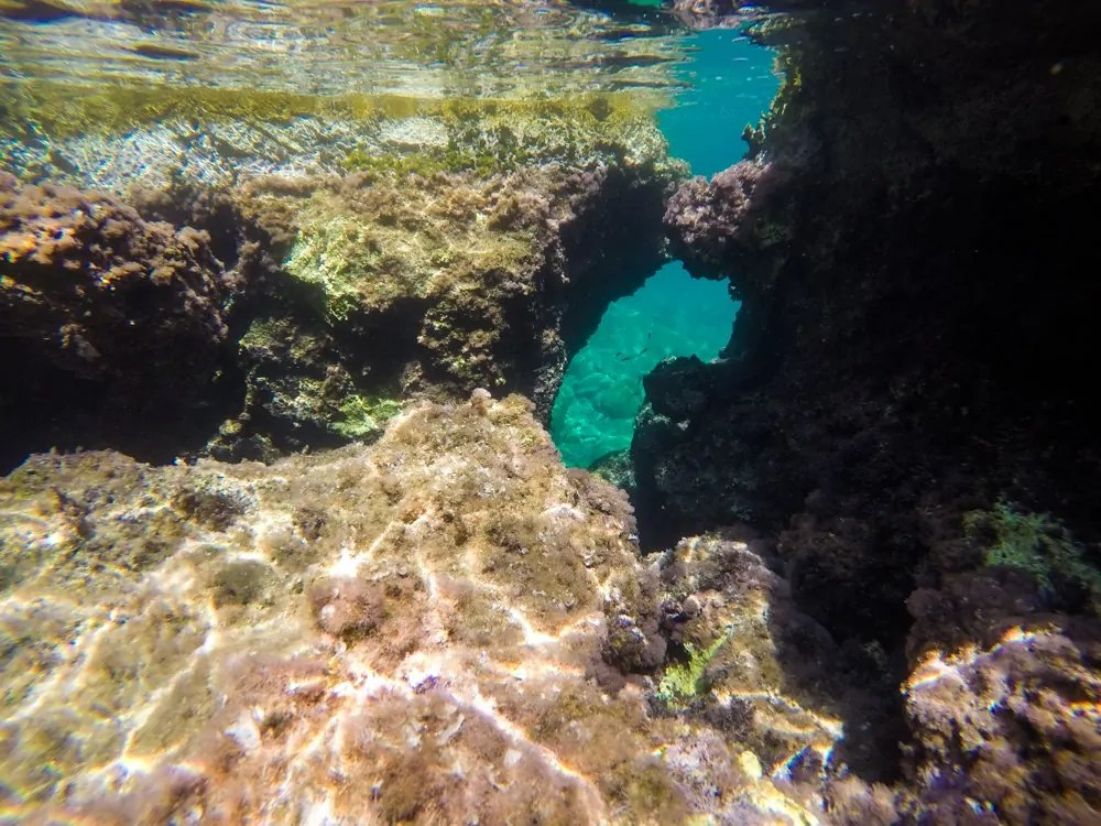 snorkeling through Caves.