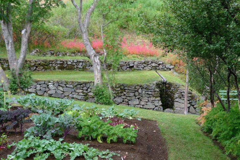 Erbe e piante - Orto dei semplici
