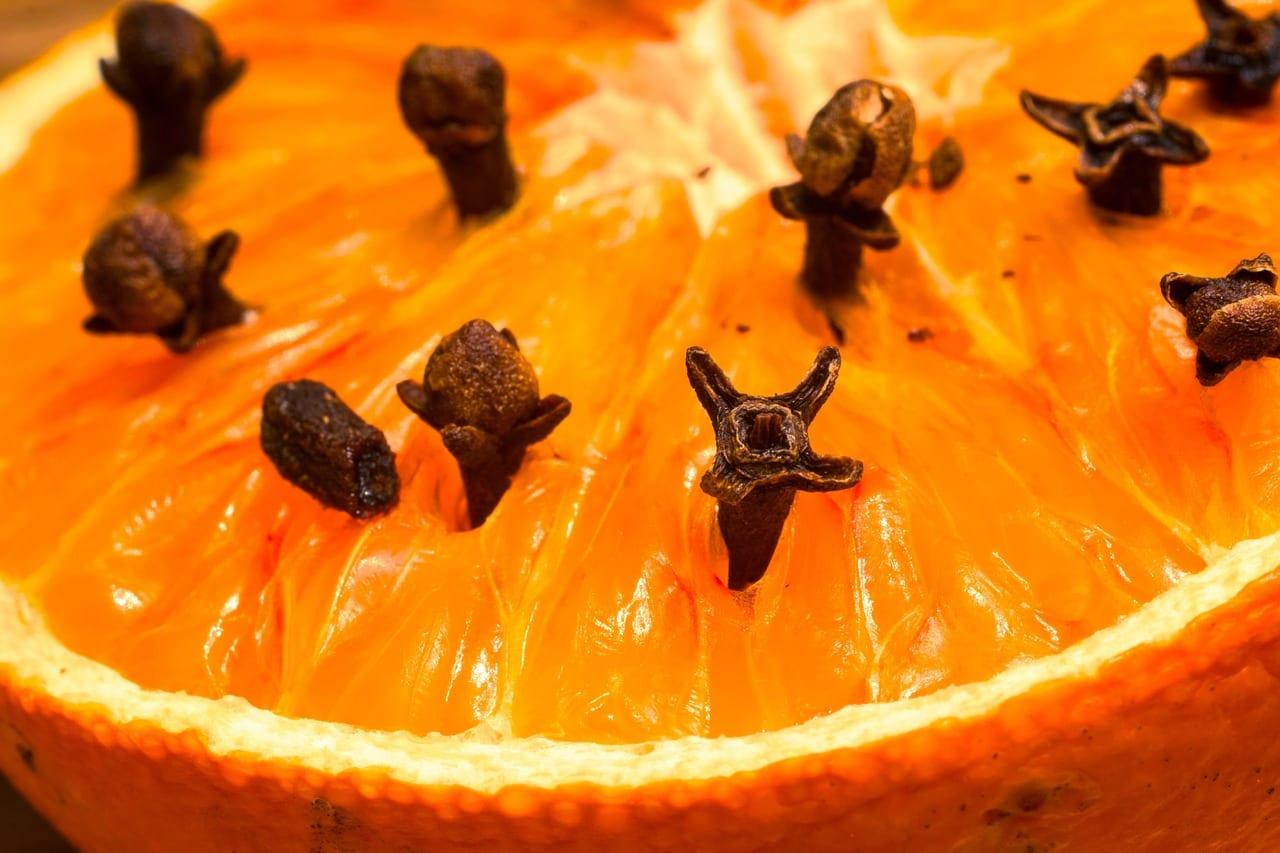 arancia-garofano