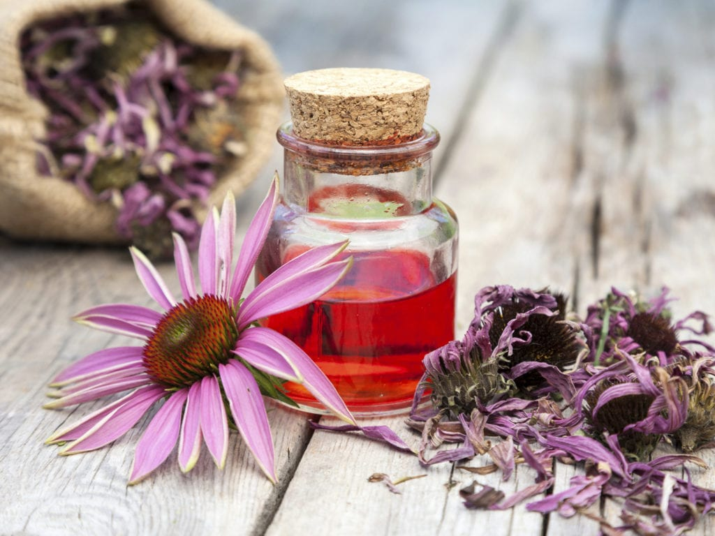 essential oil and coneflowers on wooden rustic table