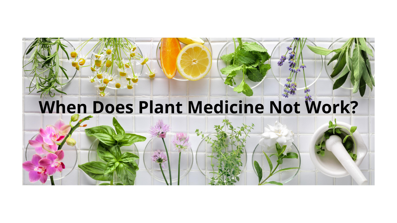 When Does Plant Medicine Not Work?