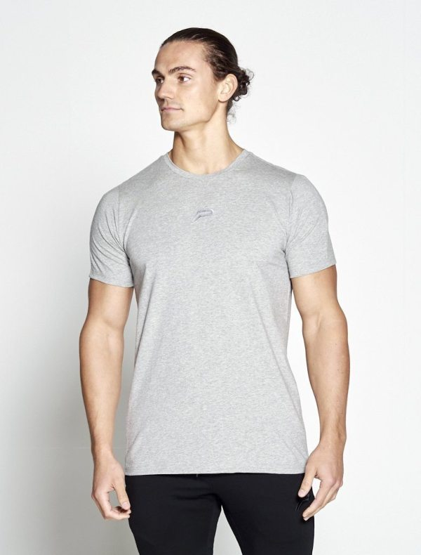 Fitness T-shirt Grijs Pro-Fit - Pursue Fitness