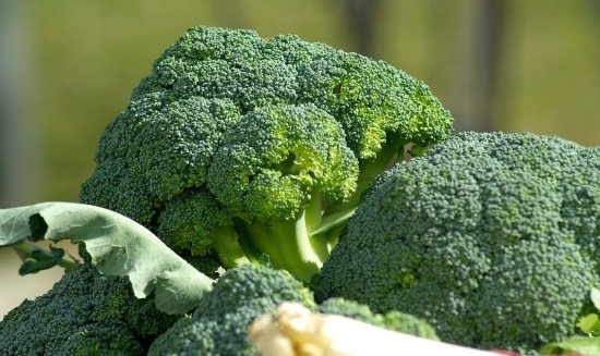 broccoli great cooked or in a salad