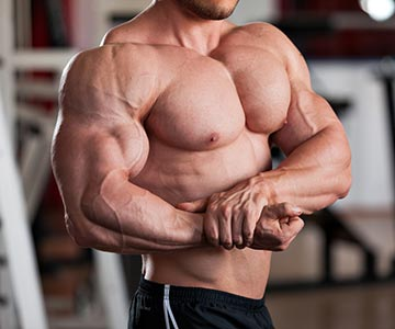 Muscle Man With Shredded Body