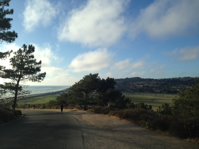 View From My Run Up Torrey Pines Yesterday