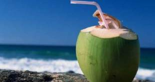 Drinking Coconut Water Every day